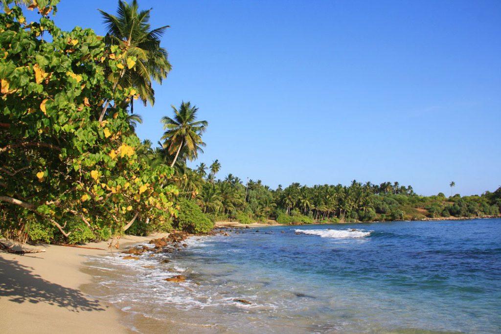 Отдых в Шри-Ланке в сентябре