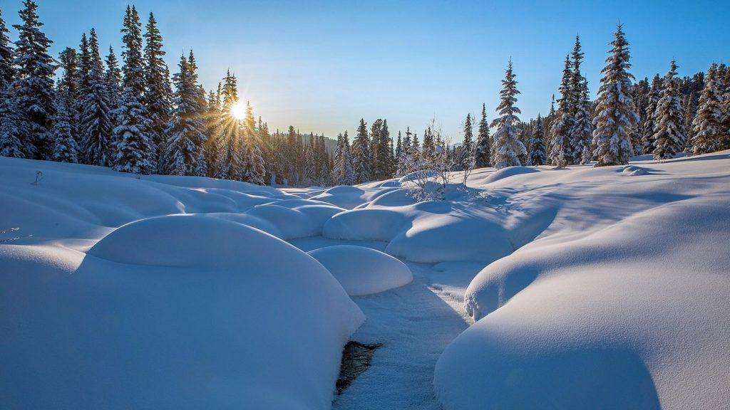Куда можно поехать на зимние каникулы в России